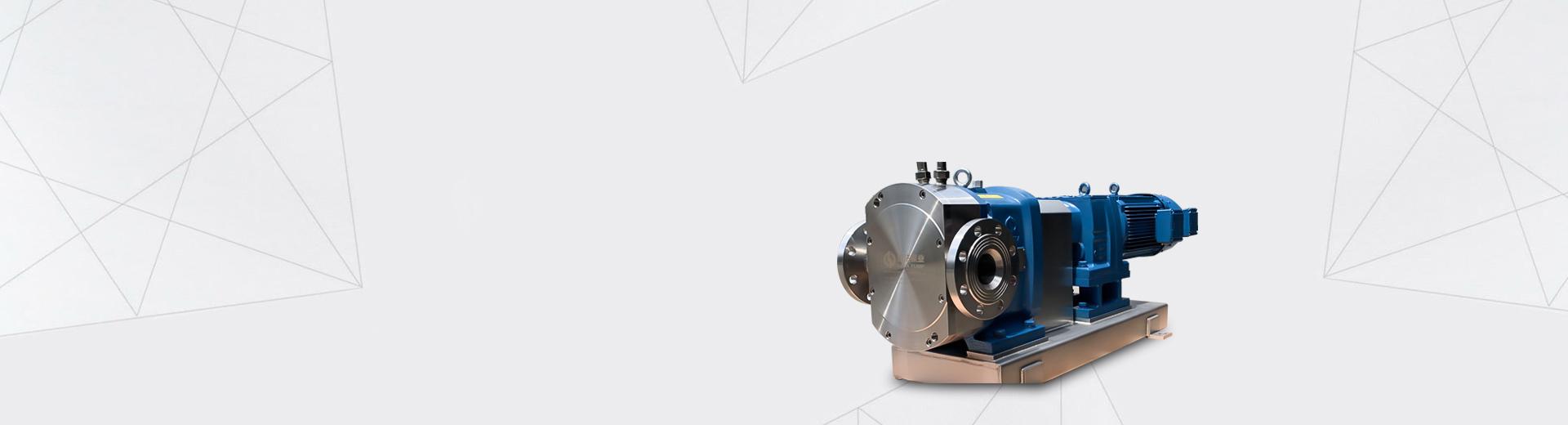 Rotor pump manufacturer